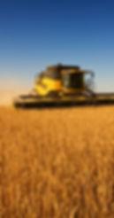 Ensillage champs agricole