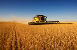 Harvest Work