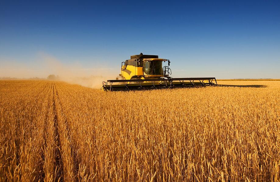 Farming operations at Cranford