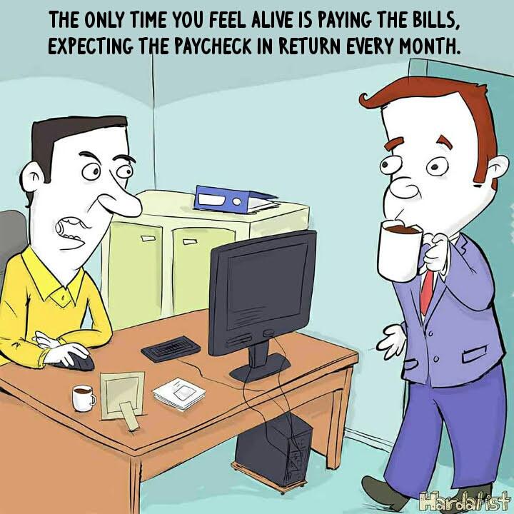 Office Catch