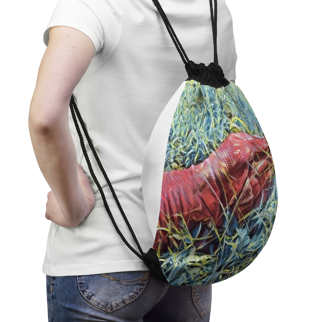 red-tegu-lizard-drawstring-bag-tegu-liza