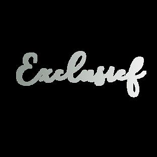 exclusief copy.png