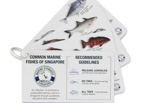 Singapore Fish ID cards