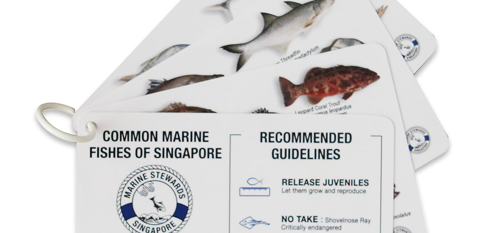Singapore Fish ID cards (plastic)