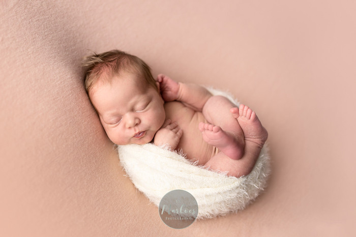 newborn gouda