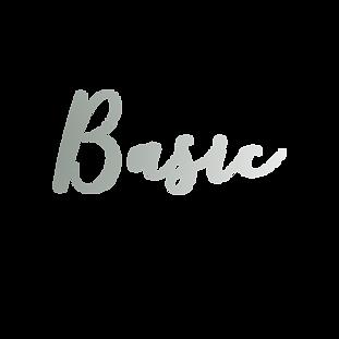 basic copy.png