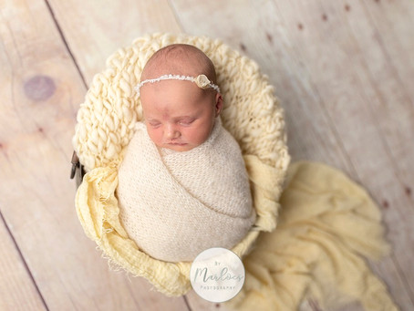 Newbornshoot in Gouda