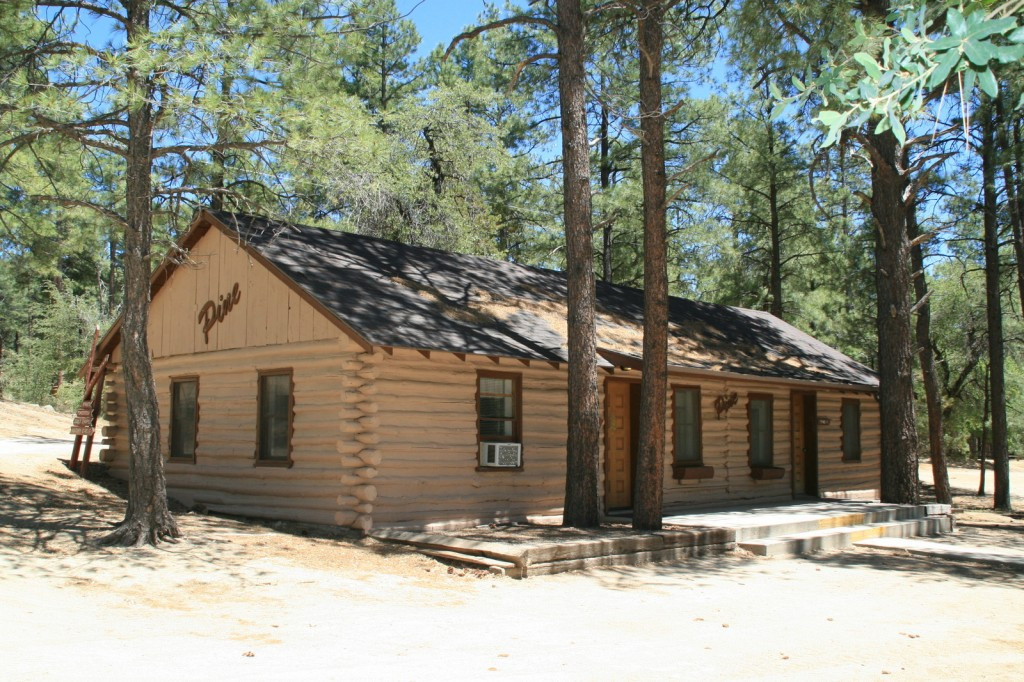 Pine 1 Front View