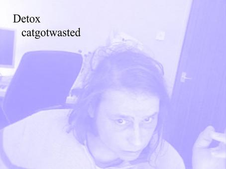 Fresh Trax! : Catgotwasted - Detox