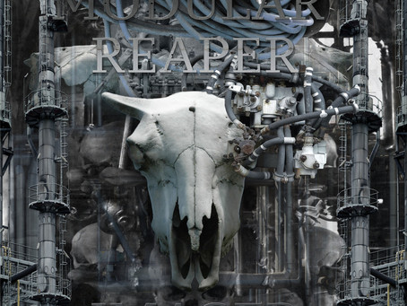 Fresh Trax! : Modular Reaper Imager - Morpheus Laughing (Skinny Puppy Cover)