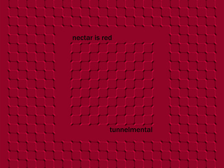 Music Video: Tunnelmental Experimental Assembly - Nectar Is Red