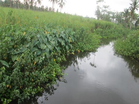 Review: Agura Matra - Riverland