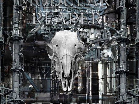 Modular Reaper Imager Releases Promo Video For New Music