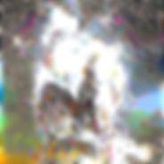 img3037864_722170069ad63cff (1).jpg