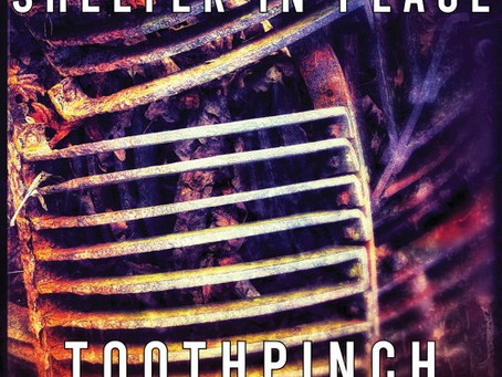 Fresh Trax!: Toothpinch - Shelter In Place (ft BESS, Accumortis, & SpanktheNun)