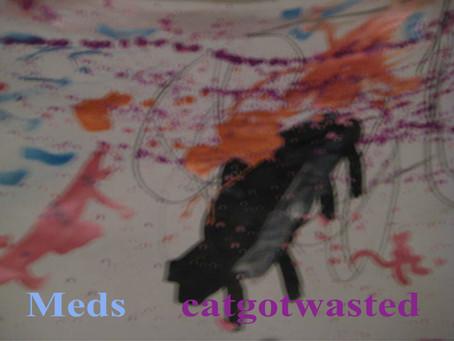 Fresh Trax! : Catgotwasted - Meds