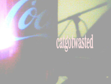Fresh Trax! : Catgotwasted - Acid Casualty