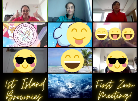 Five things we learnt from our first Zoom Brownie meeting