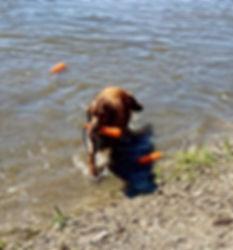 thumbnail_IMG_0728_edited_edited.jpg