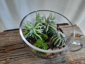 arrangement de fausses plantes