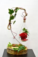 Rose éternelle 5