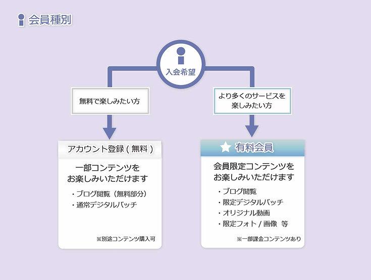 service2_1_1.5x-20.jpg