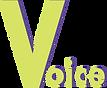 voicevoice.png