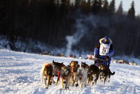 개썰매 본부 (Iditarod) (3).jpg