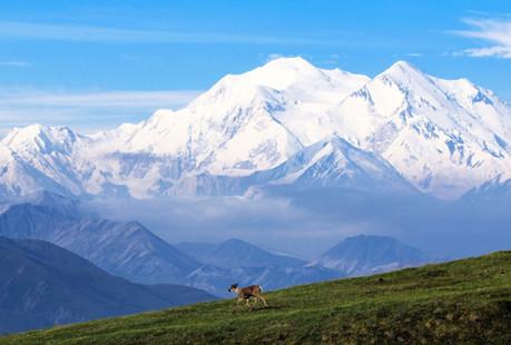 Mount McKinley_9986.jpg