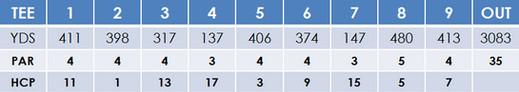 cariari golf.jpg