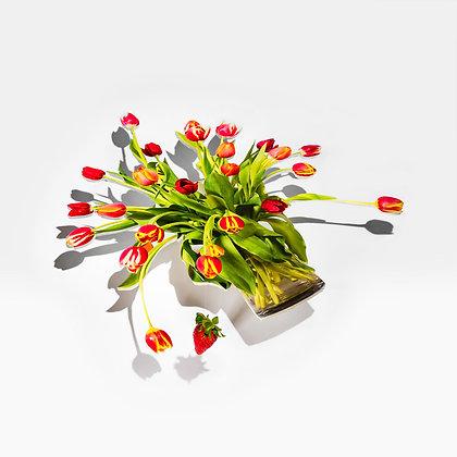 Jennifer Zwick, Floating Bouquet