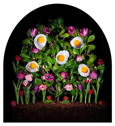 Jennifer Zwick, Spring!