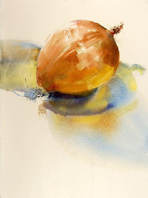Suze Woolf, Onion