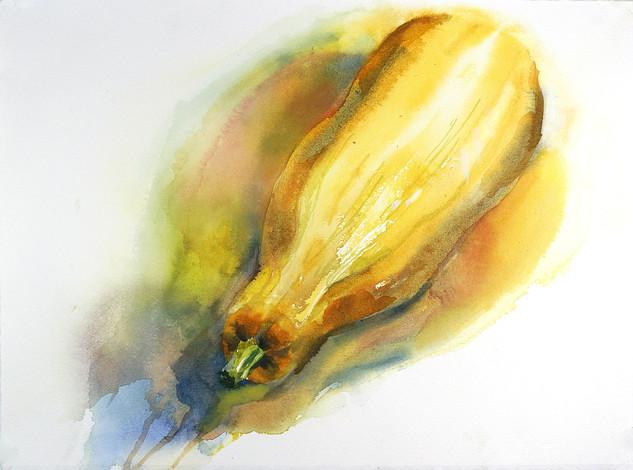 Yellow Squash 2