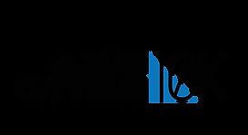 Logo_ZHM_Cityrun.png