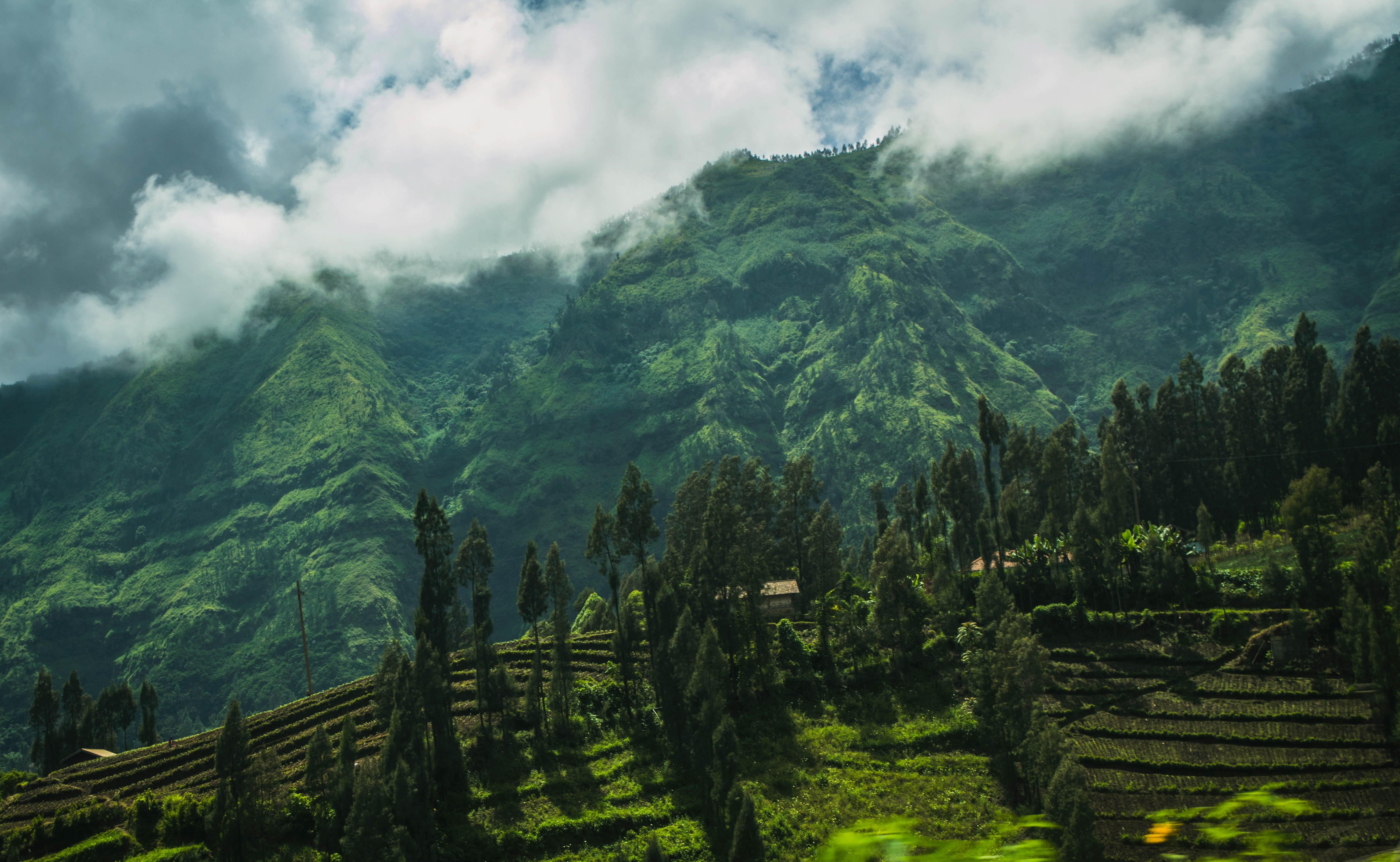 Cemoro Lawang, East Java, Indonesia