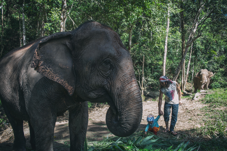 Karen Tribe, Northern Thailand