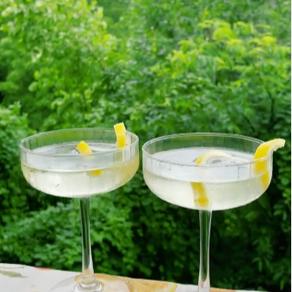 Lemon and Elderflower Summertime Spritzer