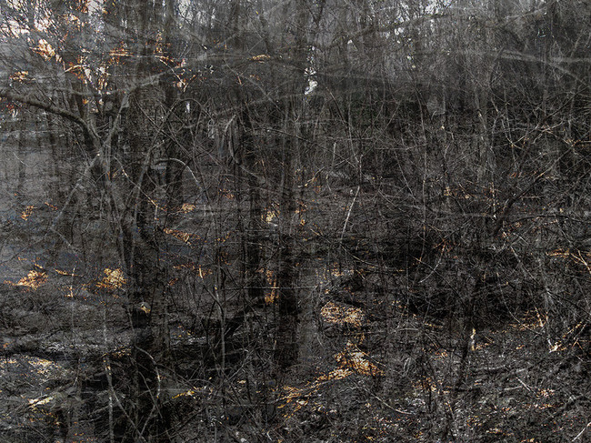 Conservation Land (Edge)
