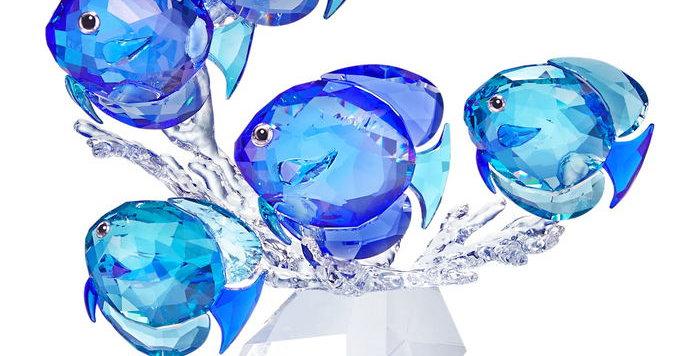 Swarovski figurer School of Fish