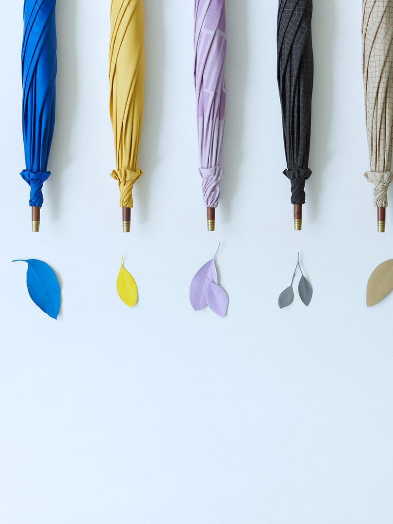 umbrella parasol parabrella