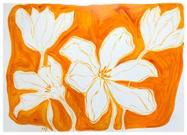Tulip Still Life IX.jpeg