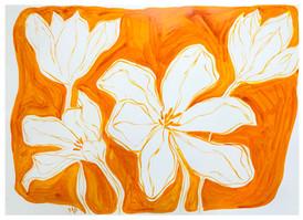 Tulip Still Life IX
