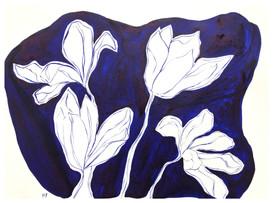 Tulip Still Life VII