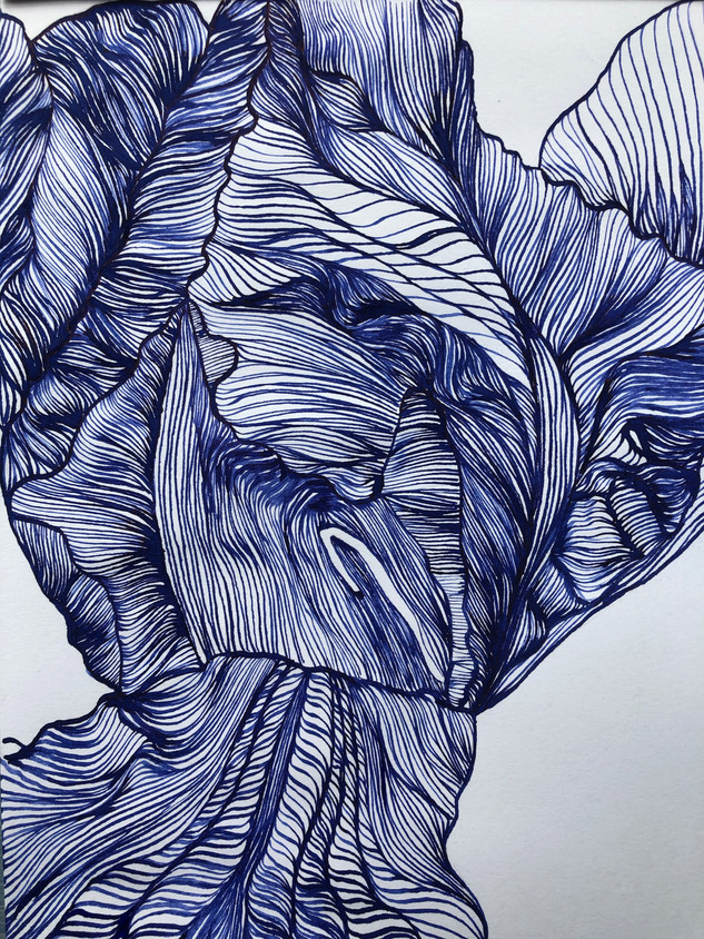 Iris in Blu e