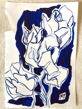 Tulip Study II