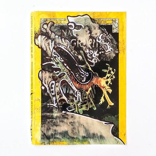 Seahorse Cover 1978