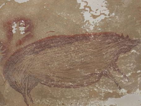 45,500 Year Old Cave Art