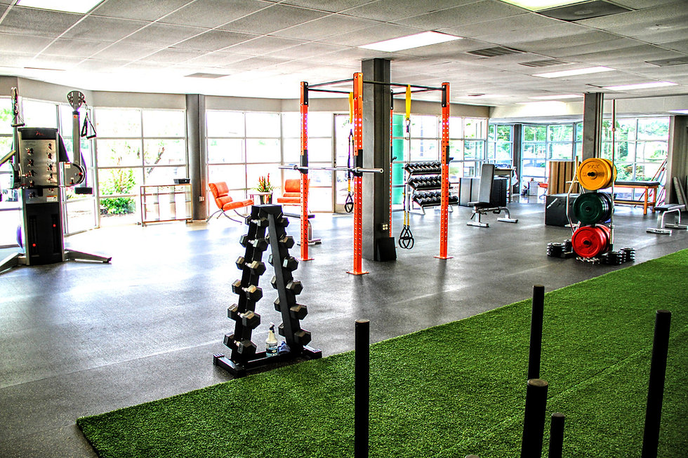Gym with dumbbells and sqaut racks