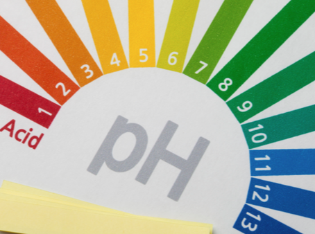 Balance your pH and reclaim your health